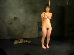 oriental beauty in suspension whipping-165
