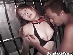 lovely bound oriental brunette hair receives her