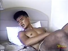 japanese jo large load